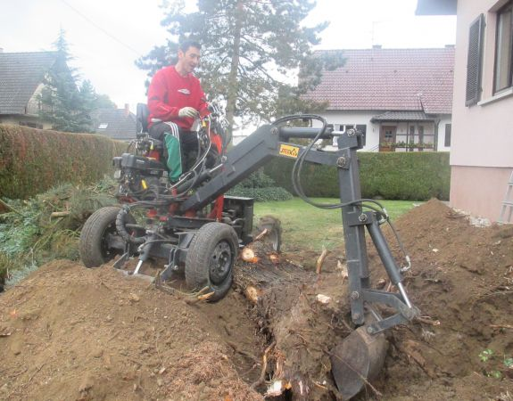 Removing thuja tree roots with a JMEKA mini digger